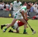 Getting down to it - Martin Comerford (O\'Loughlin Gaels) gets control of the sliotar under pressure from St. Martin\'s Liam Dowling.
