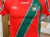 http://stmartinsgaa.ie/wp-content/gallery/gear-store/thumbs/thumbs_st-martins-jersey-front.jpg