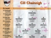 intermediate-all-ireland-hurling-final-2003