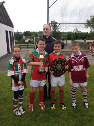 The captains at the Fr. Delaney & shield cup day 29-6-13